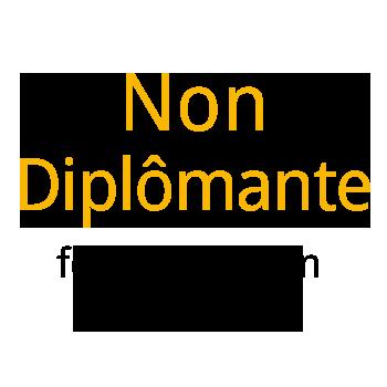 formation non diplomante